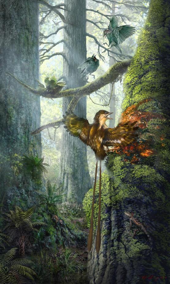 自然与科学 - Magazine cover