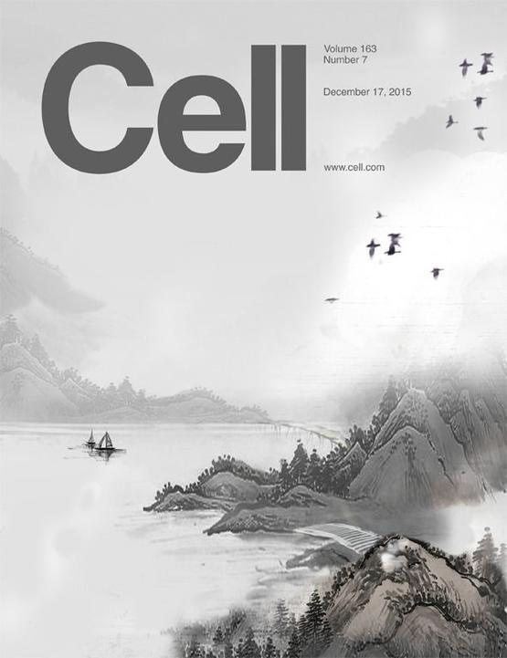 北上 - Magazine cover