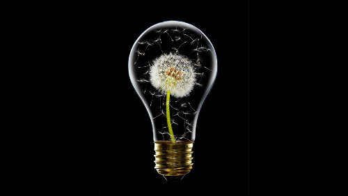 Why Constraints Are Good for Innovation