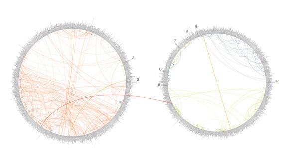 Visualization as Process, Not Output