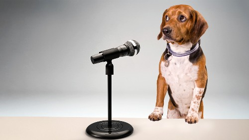 To Overcome Your Fear of Public Speaking, Stop Thinking About Yourself