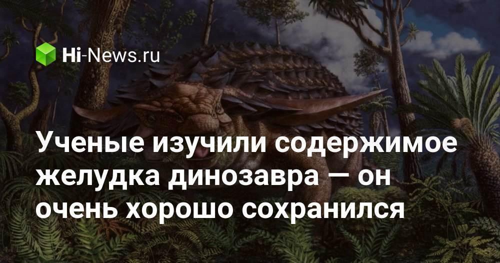 Ученые изучили содержимое желудка динозавра — он очень хорошо сохранился