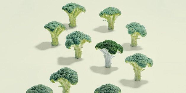 Broccoli Eaters Get More Out Of Life   HuffPost Life