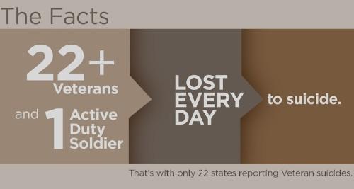 Veteran Suicide Prevention Through Employment