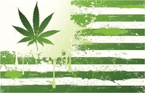 State Lawmakers Want Feds To Respect Their Marijuana Laws