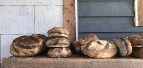 How Sourdough Bread Is Helping People Eat Gluten Again