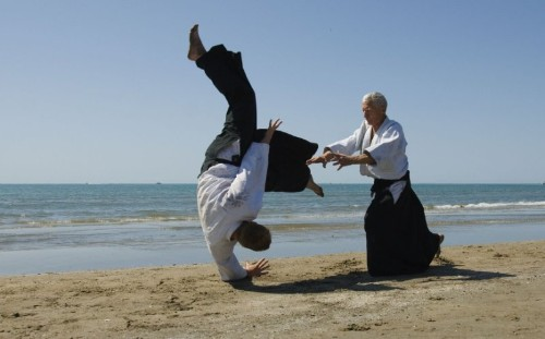 Verbal Aikido: How to Respond to Reasonable AND Unreasonable Challenges (6.6)
