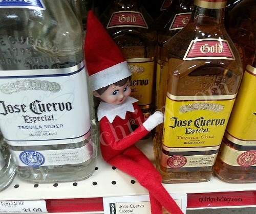 I Don't Have Kids, but I Love My Elf on the Shelf