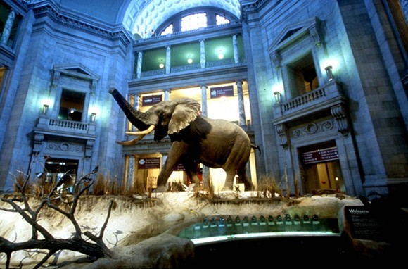 10 Amazing Free Museums in the U.S.