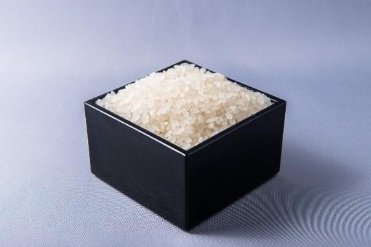 日本よ、これが「第三のミルク」だ!「ライスミルク」ブームがやってくる