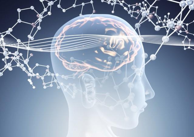 恩送りができる人の脳が示す未来