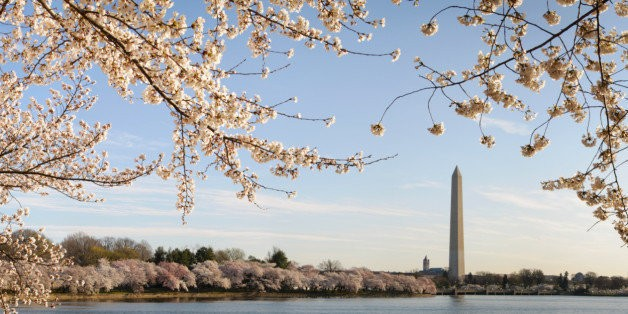 Want a Taste of Washington? Then Sample This | HuffPost Life