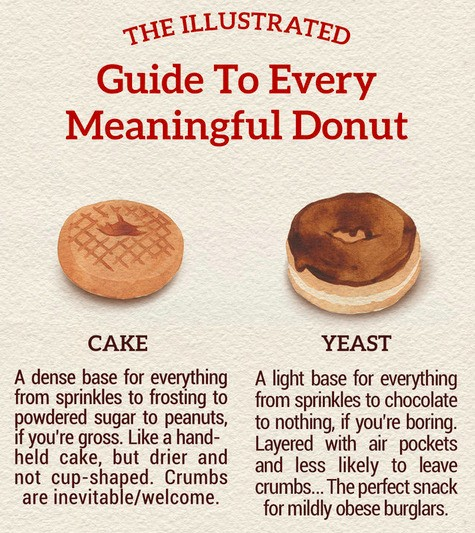 The Illustrated Guide To Every Meaningful Donut