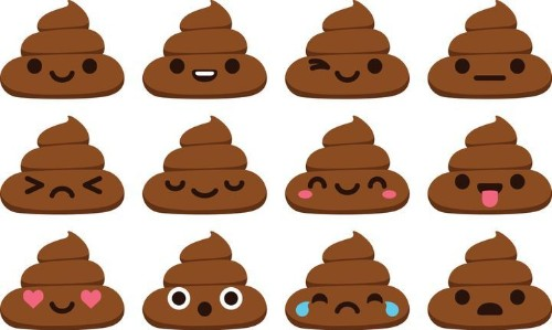 How To Tell If You're Pooping Right | HuffPost Life