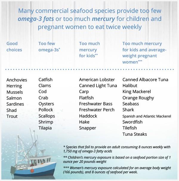 Eating Seafood: Health Boon or Health Threat?