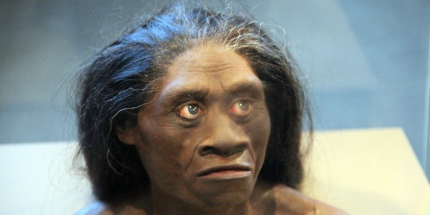 Controversial 'Hobbit Species' Simply May Have Been Early Human With Down Syndrome