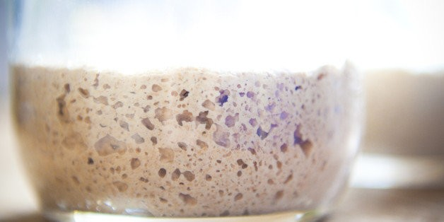 So What The Hell Is Yeast, Anyway, And How Does It Work? | HuffPost Life