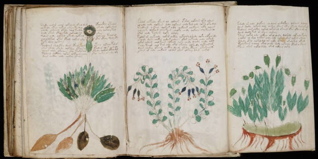 Professor Decodes 10 Words From Mysterious Voynich Manuscript (VIDEO)