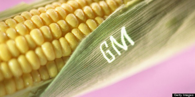 Genetically Engineered Food Labeling Taken On By Congress In Right-To-Know Act