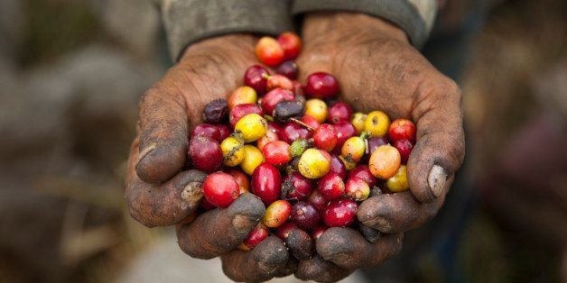 10 Reasons Fair-Trade Coffee Doesn't Work