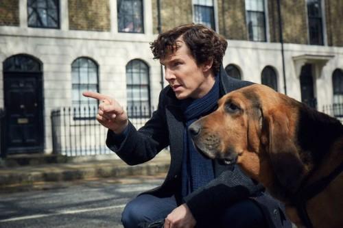 'Sherlock' Star Benedict Cumberbatch 'Directly Related' To Sherlock Holmes Author