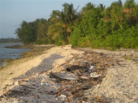 Litter from Indonesia -- Rubble in Paradise: Cleaning Up the Looney Front