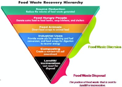 Why Consumers Care About Restaurant Food Waste