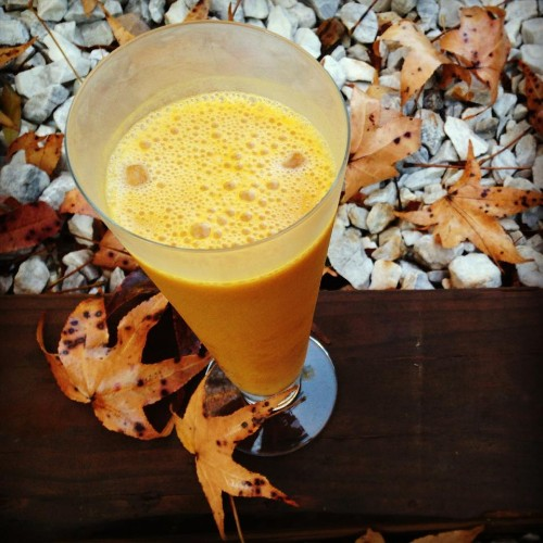 Creamy Fall Smoothie for Mom and Baby