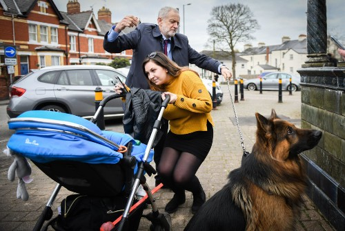 Jeremy Corbyn Trying To Control Acer The Alsatian Makes An Instant Meme