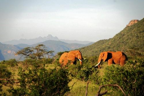 10 Incredible Adventures in Kenya
