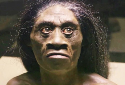 Modern Humans May Have Caused The Extinction Of Real 'Hobbits'