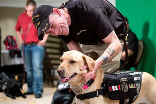 A New Act Could Provide Veterans Who Have PTSD With Service Dogs