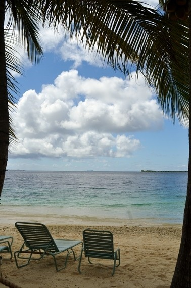 In Aruba, Life's a Beach