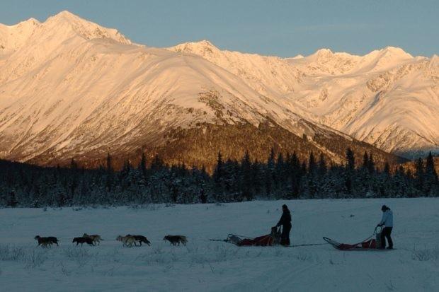 In Alaska, Bizarre Final Days, Suicide of Ex-Iditarod Musher Leave Friends Stunned