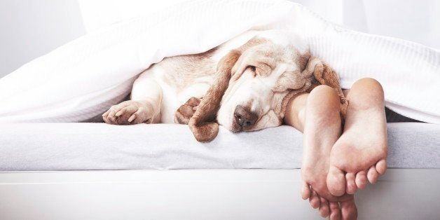 The 3 Things You Should Be Thinking About Before Bed (And 3 You Need To Forget) | HuffPost Life