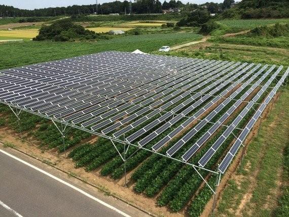 ソーラーシェアリングでエネルギー兼業農家をめざせ