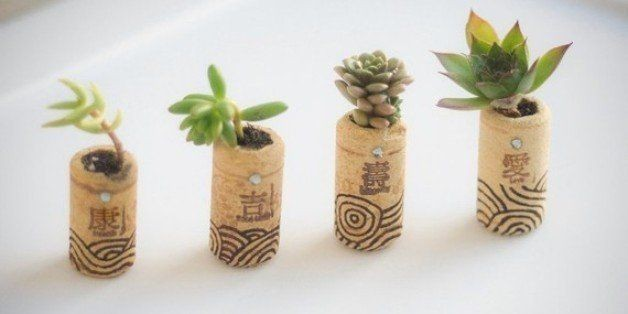 Our Most Popular DIY Planters