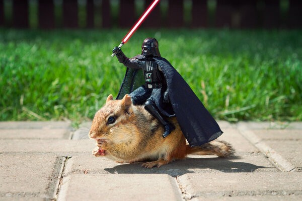 Star Wars Figurines Make Friends With Small Rodents, The Galaxy Is At Peace