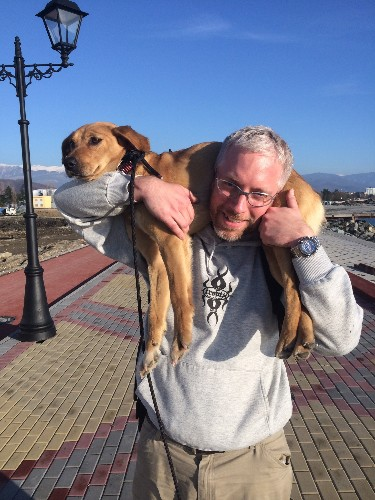 Finding Fisht: The Story of Friendship Between a Stray Dog in Sochi and the Man Who Saved Her