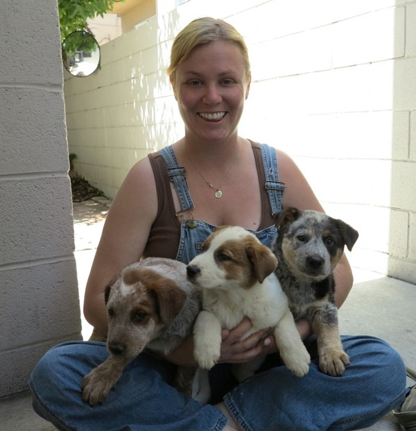 """Annie Hart: """"I Set Out to Rescue Dogs, But the Dogs Rescued Me"""""""