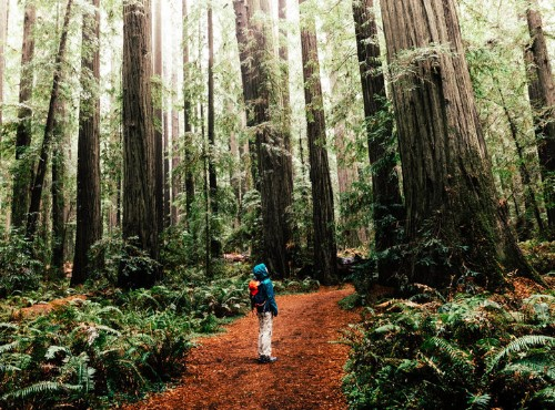 Lonely Planet's Top U.S. Destination Of 2018 Is An Underrated Treasure