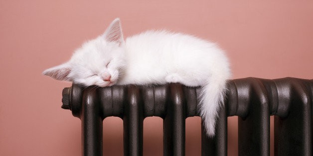 The Mystery Of Sleep | HuffPost Life