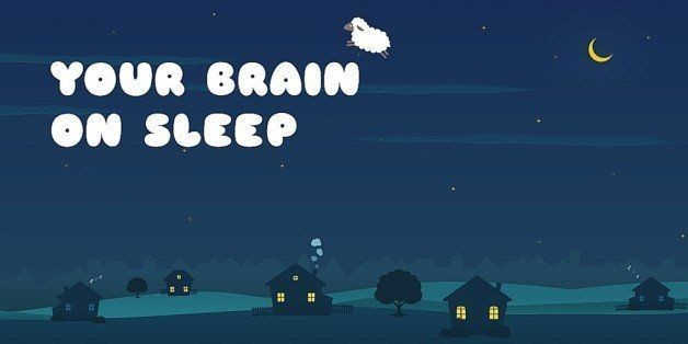 Sleep On It: Your Brain Never Takes a Night Off