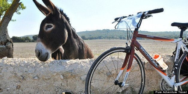 A Cyclist's Guide to Puglia | HuffPost Life