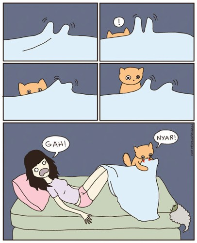 'Cat Versus Human' Illustrations Perfectly Summarise What It's Like To Live With Cats