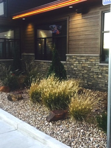 Is Aspen Creek Grill the Next Great American Restaurant Chain?