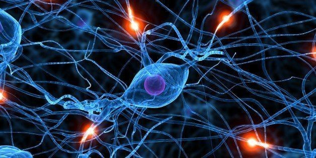 Scientists Discover 'Reset' Button For Brain's Biological Clock