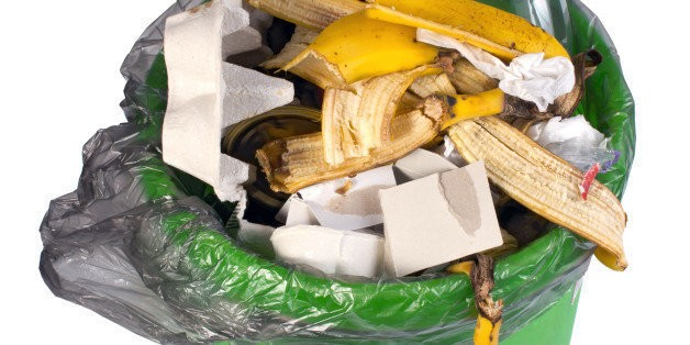 Wasted Opportunities: Food Waste Problems and Solutions