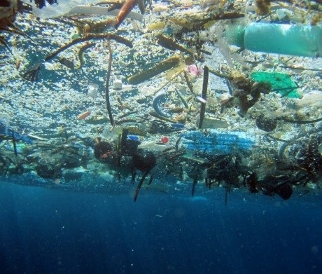 We Can't Let it Be... More Plastic Than Fish in Our Sea