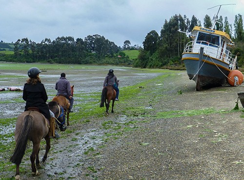 Chasing Chiloe: Going Where This Girl Has Gone